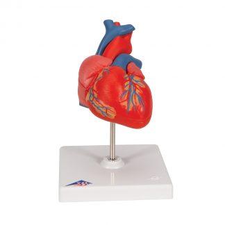 Klasyczne serce
