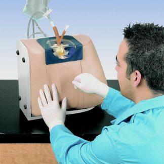 Symulator do nakłuć lędźwiowych