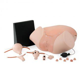 Symulator ginekologiczny przedstawia część miedniczą pełnoletniej kobiety, ponadto przeznaczony jest do rozwijania oraz doskonalenia diagnostycznych umiejętności.