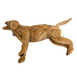 Manekin psa do intensywnej terapii