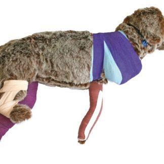 Manekin psa do nauki bandażowania